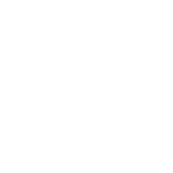 Gyro stabilized optronics for UAV & UGV
