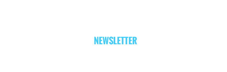 Lettre d'information Nexvision décembre 2014