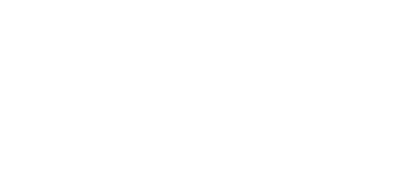 The Nexvision's new logo !